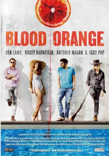 Blood Orange 2016 HDRip XviD AC3-EVO 1.3 Gb